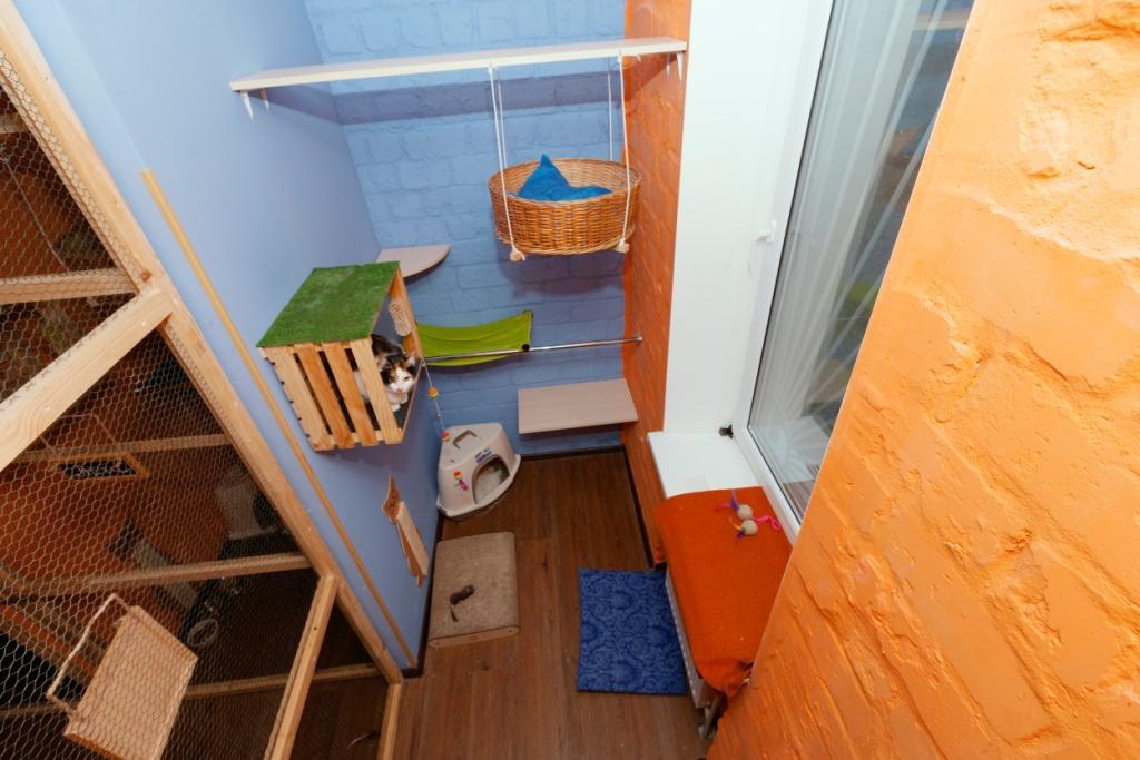 номер в гостинице для собак и кошек Киев ВДНХ