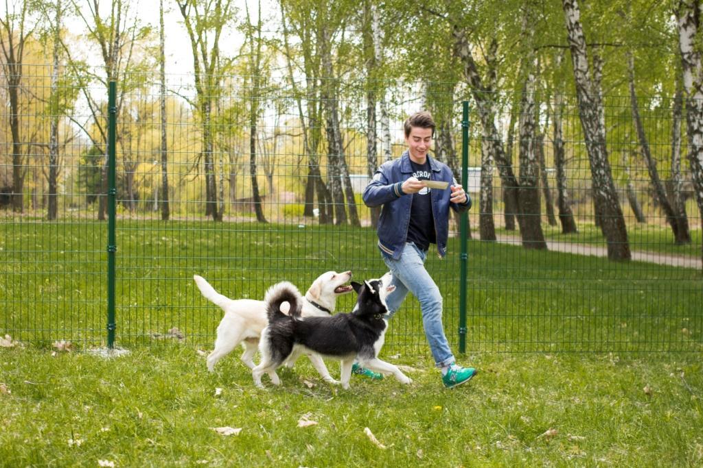 виды аллергии у собак