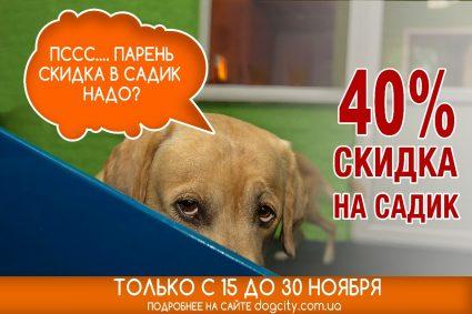 Акция в Центре Dog City — 40% скидка на садик для собак