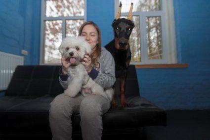 Позитивное подкрепление — революция в воспитании собак?