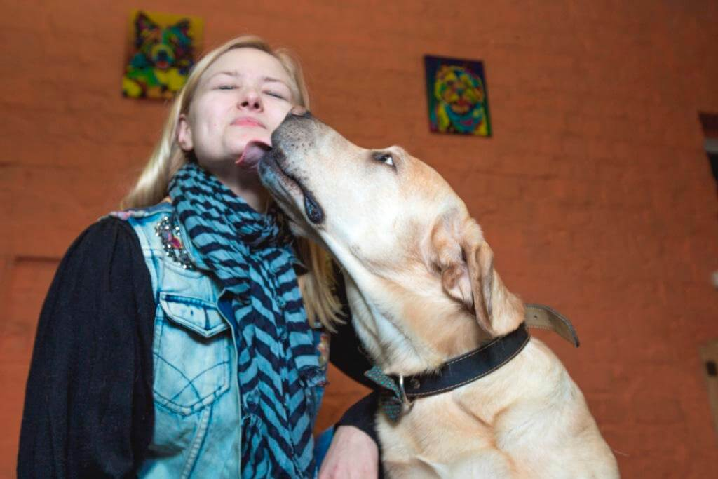 история взаимоотношений между людьми и собаками