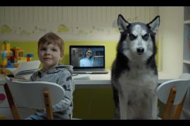 Как познакомить собаку с ребенком?
